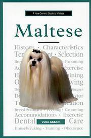 A New Owner's Guide to Maltese