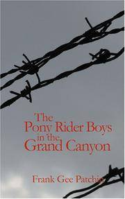 image of The Pony Rider Boys in the Grand Canyon: The Mystery of Bright Angel Gulch