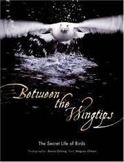 BETWEEN THE WING TIPS:  THE SECRET LIfE OF BIRDS