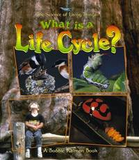 What Is a Life Cycle? (The Science of Living Things)
