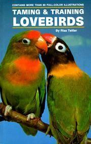Taming/Training Lovebirds