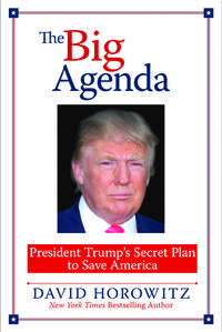 BIG AGENDA: President Trump's Plan to Save America [Hardcover] Horowitz, David