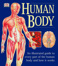 HUMAN BODY: An Illustrated Guide To Every Part Of The Human Body & How It Works