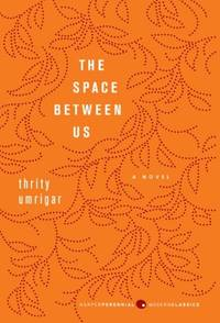 The Space Between Us: A Novel (P.S.)