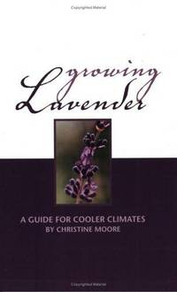 Growing Lavender: A Guide for Cooler Climates