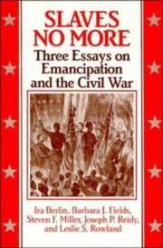 Slaves No More: Three Essays on Emancipation and the Civil War