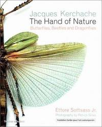 The Hand of Nature: Butterflies, Beetles, and Dragonflies