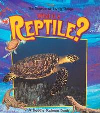 What Is a Reptile? (The Science of Living Things)