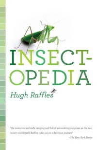 Insectopedia by  Hugh Raffles - Paperback - from North Coast Trading Post and Biblio.com