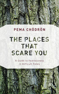 PLACES THAT SCARE YOU: A Guide To Fearlessness In Difficult Times (new edition)