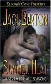 image of A Storm for All Seasons: Summer Heat (Book 1)