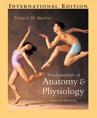 Fundamentals of Anatomy & Physiology by Frederic H. Martini - Paperback - 2006 - from Anybook Ltd (SKU: 6381237)