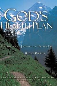 GOD'S HEALTH PLAN - THE AUDACIOUS JOURNEY TO A BETTER LIFE