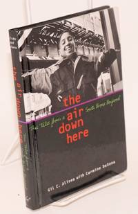 The Air Down Here: true tales from a South Bronx boyhood