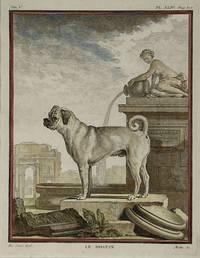 [MATTED PRINT]. Le Douin (The Pug), Pl. XLIV