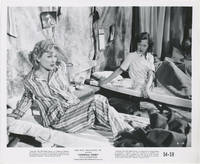 image of Carnival Story (Collection of seven original photographs from the 1954 film)