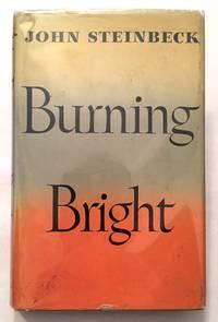 image of Burning Bright