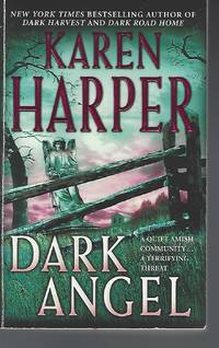 Dark Angel (Maplecreek Amish Trilogy #3)