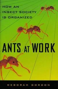 image of Ants at Work : How an Insect Society Is Organized