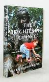 The Brightening Glance Imagination and Childhood