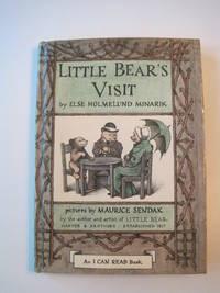 Little Bear's Visit