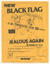 View Image 14 of 17 for 16 Black Flag Flyers Inventory #364995
