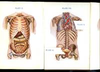 The Human Body and its Functions [New Edition] [2]