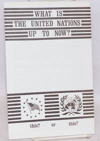 What is the United Nations up to now