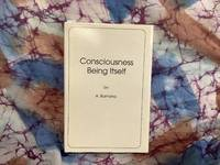 Consciousness Being Itself