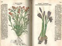 Histoire des Plantes de M. Leonhart Fuschsius, avec les noms Grecs, Latins & Fracoys,...