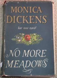 image of No More Meadows.