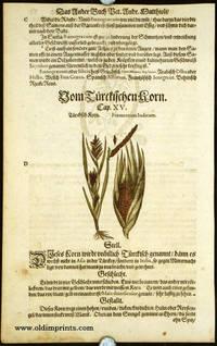 Frumentum Indicum