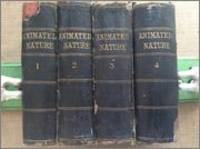 History of the Earth and Animated Nature 4 volume set