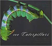 image of 100 Caterpillars: Portraits from the Tropical Forests of Costa Rica