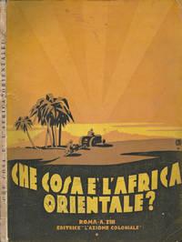 Che cosa è l' Africa Orientale ?