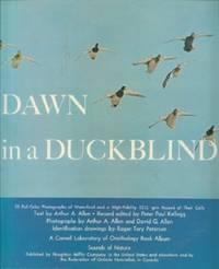 Dawn in a Duckblind