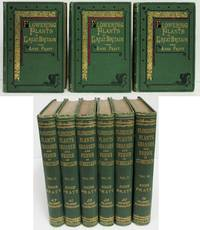 THE FLOWERING PLANTS, GRASSES, SEDGES AND FERNS OF GREAT BRITAIN AND THEIR  ALLIES THE CLUB MOSSES, PEPPERWORTS AND HORSETAILS (6 VOLUMES)  Flowering  Plants of Great Britain