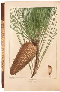 Histoire des Arbres Forestiers de l'Amerique Septentrionale, consideres principalement sous les rapports de leur usage dans les arts et de leur introduction dans le commerce ..