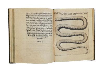 Discursus medico-philosophicus de...