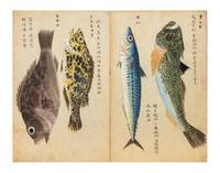 An album with 76 very fine watercolor illustrations of fish, crustaceans, sea cucumbers, & one sea mammal (a seal), mostly edible specimens but a few poisonous