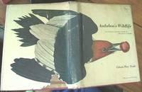 image of Audubon's Wildlife; with Selections from the Writings of John James Audubon