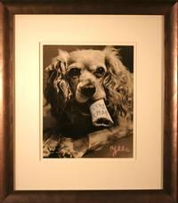 MERRY XMAS -  DOG WITH BONE