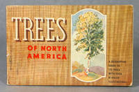 Trees You Want To Know