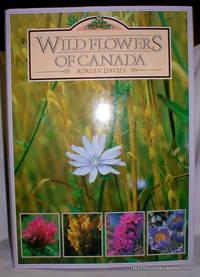 Wild Flowers of Canada