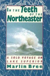 image of In the Teeth of the Northeaster : A Solo Voyage on Lake Superior