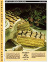 image of McCall's Cooking School Recipe Card: Pies, Pastry 15 - Napoleons  (Replacement McCall's Recipage or Recipe Card For 3-Ring Binders)