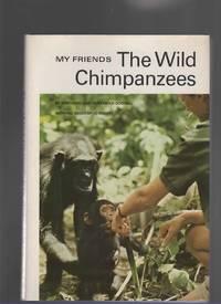 MY FRIENDS  THE WILD CHIMPANZEES