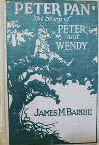 image of Peter and Wendy:  Photoplay Title Peter Pan