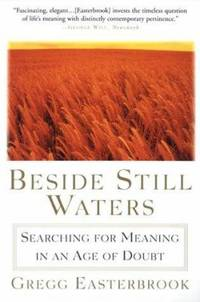 image of Beside Still Waters : Searching for Meaning in an Age of Doubt