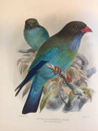 A monograph of the Coraciidae, or family of the Rollers